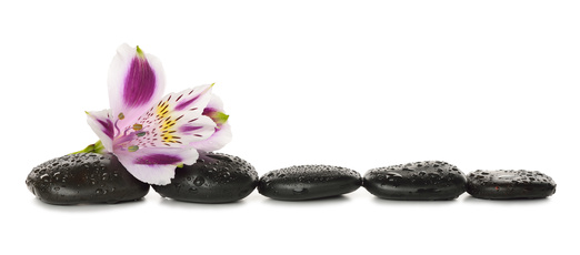 Stones and lily isolated on white background
